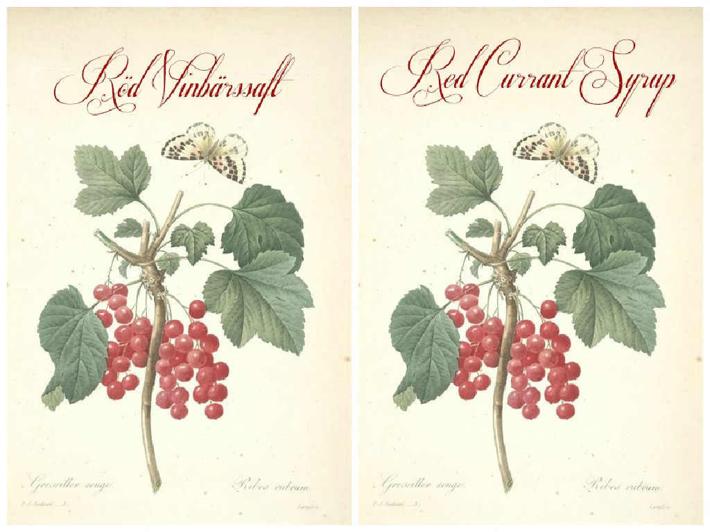 Free Printable Red Currant Syrup Label | HungryHeart.se