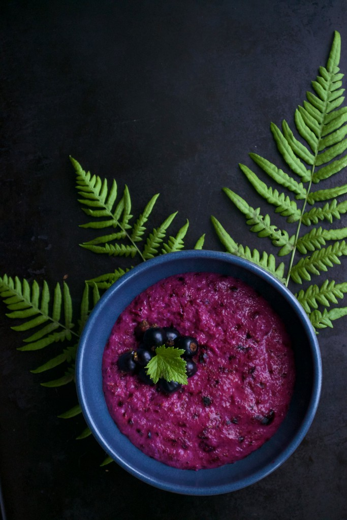 Black Currant Porridge Recipe | HungryHeart.se