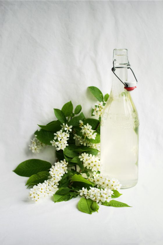 Bird Cherry Flower Cordial Recipe | HungryHeart.se