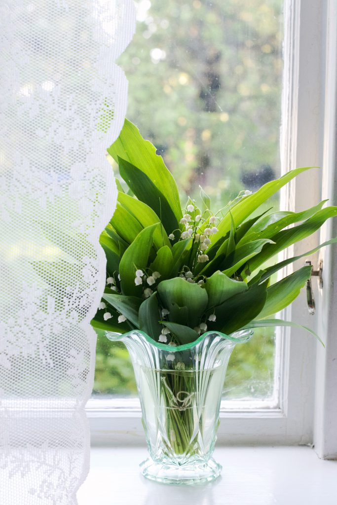 Lily of the valley | HungryHeart.se