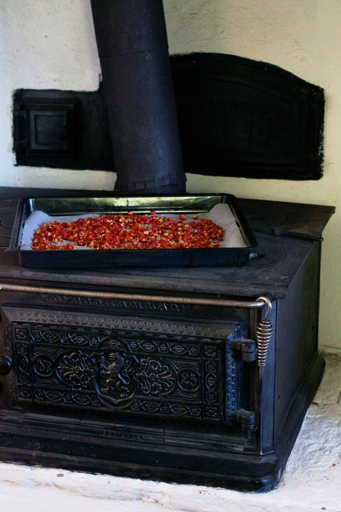 Wood stove | Hungry Heart