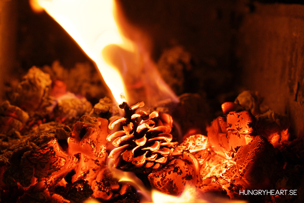 DIY Pinecone Fire Starters | Hungry Heart